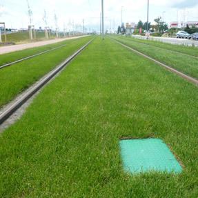Bewässerung Rasengleis Kesselsdorfer Straße