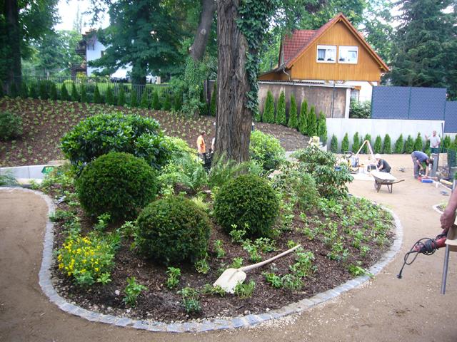 bepflanzung1